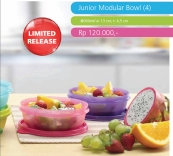 Junior Modular Bowl (4)